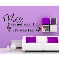 Music is not what is do, its who i am  sticker2